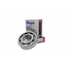 Rotor Bearing Set - TW280